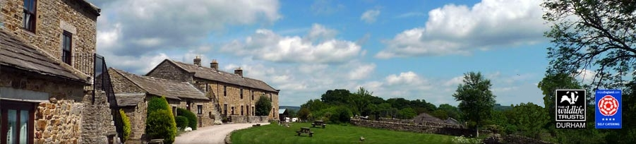 East Briscoe Farm 
